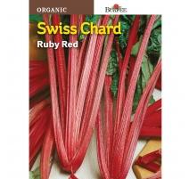 Bette À Carde Ruby Red - Semences